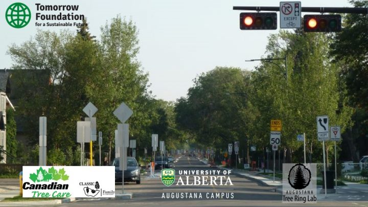 Urban Trees & Improving Neighbourhood Air Quality (materials from Dr. Greg King's July 28 Presentation)