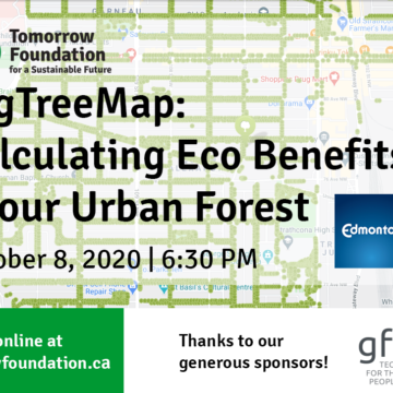 Webinar poster - text over an image of the Tree Map